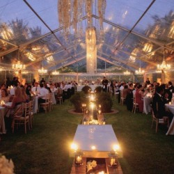 Party & Wedding Tents at Best Price